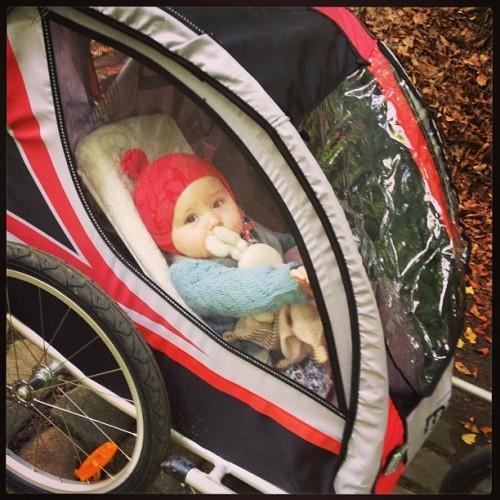 Emma - remorque vélo Maxxus